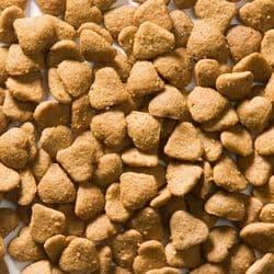 Корм GREENHEART-PREMIUMS Cat adult Chicken 1,5 кг безглютеновый рацион для всех кошек на основе мяса курицы