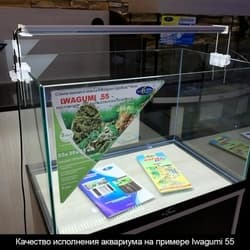 Аквариум для акваскейпинга Iwagumi 55 (60 литров) Без тумбы и светильника