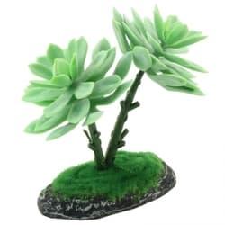 """Растение для террариума 008TP """"Амаполо"""", 500мм"""