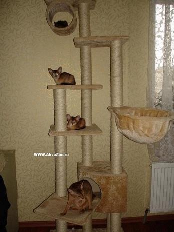 Домик для кошек Мадрид бежевый